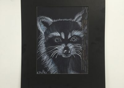 Kale - Ricky the Racoon (Age 9)